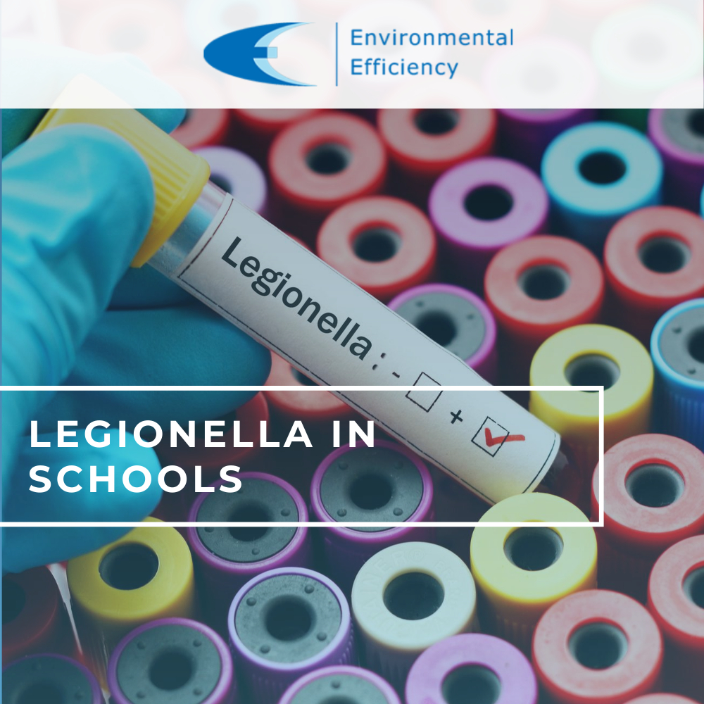 legionella in schools